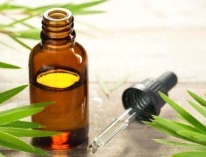 aceite árbol de te
